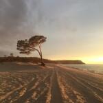 Сарайский пляж На закате